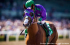 The Horse Racing world was almost deprived of a potential Triple Crown by California Chrome over the use of a nasal strip, which was approved by the NYRA today.